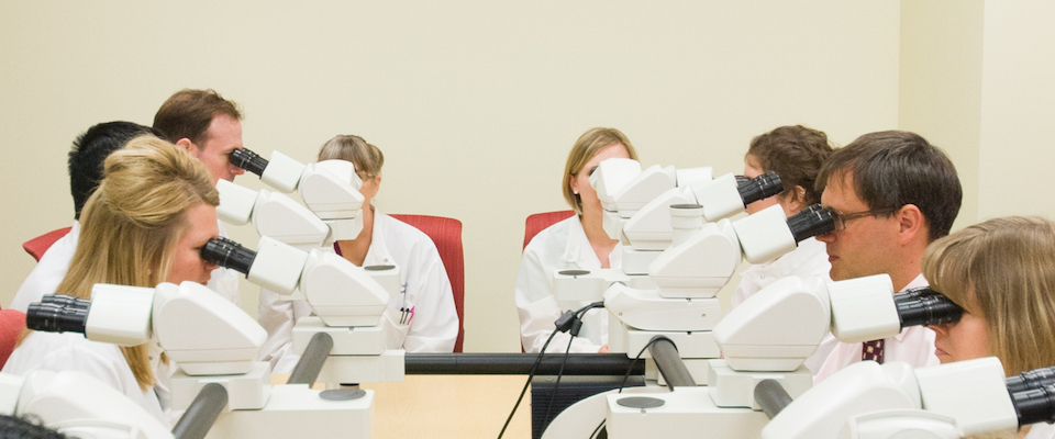 Pathology residents look at slides in microscopes